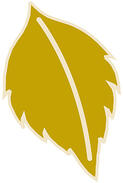 BC-Leaf.jpg