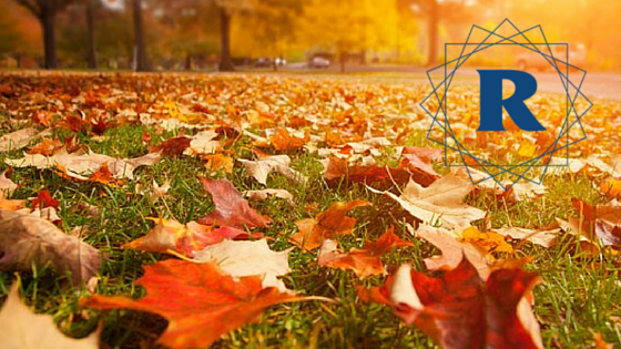 Fall_Leaves_with_Ryan_R.png