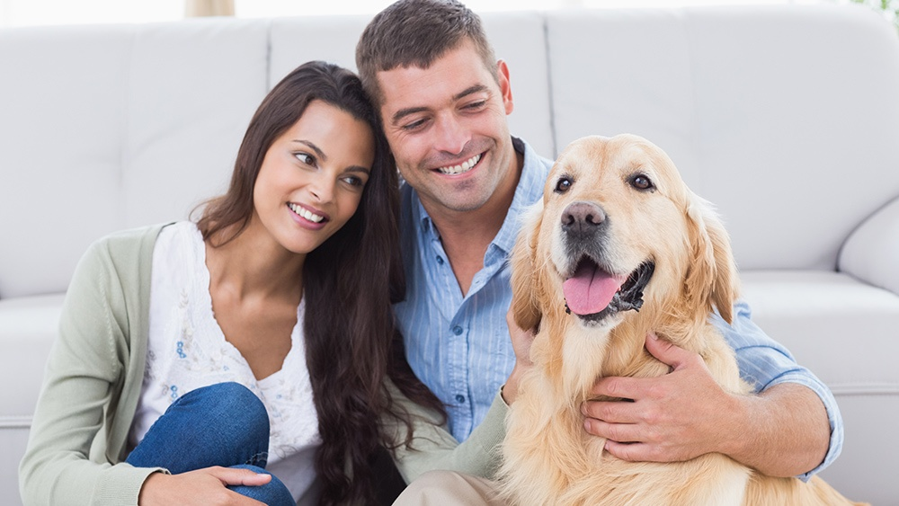 millennials-buying-a-new-home-dogs.jpg